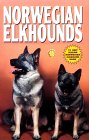 Click link to order Norwegian Elkhounds