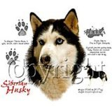 Click the link to order Siberian Husky Sweatshirt
